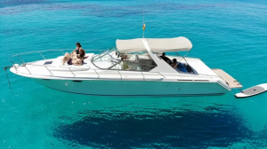 SeaRay SunSport IceIceBaby