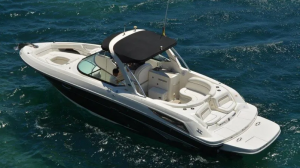 SeaRay 300SLX FlipFlops